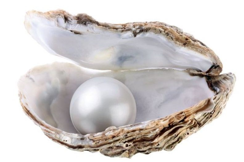what is pearls